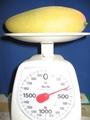ナンドクマイン マンゴー収穫