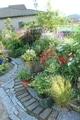 5月の荒れ地ガーデン