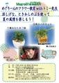 7月 19日(火)めぐりーんのフラワー教室withトミー