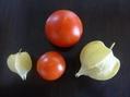 茄子とトマト