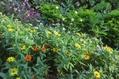 メインの花壇