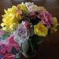 今朝の「バラの花束」‼️