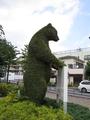 練馬のクマ