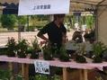 新潟県立植物園…家族連れで賑わっていた!