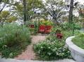 10月21日(金)は、トミーの園芸教室 第12回 でした。