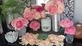 今日のバラ達1