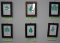 展示会「拓葉で見る日本の落葉樹」のご紹介
