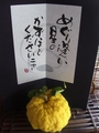 柚子ではない獅子柚子!