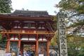 奈良に行ってきました。
