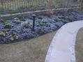 霜の降りた庭
