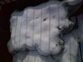 寒さ避けの不織布