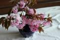 桜リレーの最終