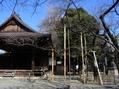 神代と大船植物園・靖国神社