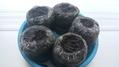 ブラックサポテの種まき