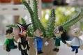 ドクロの花