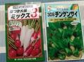種蒔きと植え替えと