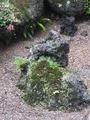 しっとり苔庭の朝