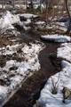 雪融けBefore/After