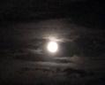 中秋の名月が見れました!