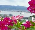 25日7時22分函館西埠頭にシルバー・シャドー入港
