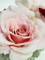 昨日切って飾ったバラ