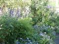 秋のブルー2