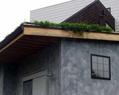 傾斜草屋根60㎡メンテナンス