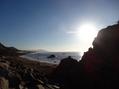 伊良湖岬 3  (2は花友さんの日記です)