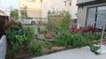 庭造り計画H3010