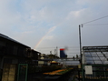 虹が出てました。