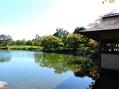 行楽日和~昭和記念公園