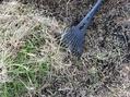 ✂️おばさんは裏庭へ芝刈りに…