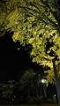 秋の夜長に 🍁part3