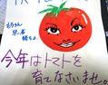 リンゴの摘果作業 と 目力の強すぎたトマトさん