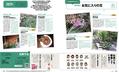 【テキスト掲載情報】『趣味の園芸』1月号に掲載されたメンバーを発表!