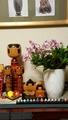 ふくおかルーバルガーデン2~春を待つ庭便り💠ひな🎎を飾って、甘い初恋💖を飾って。