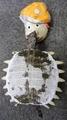 コンニャク亀の襲撃