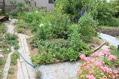 荒地ガーデンをリセット