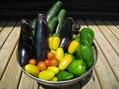 野菜の時間④
