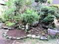 今日の園芸作業