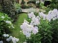 初夏の庭…№3