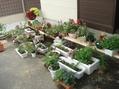 鉢棚を作りました。