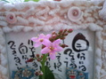 小花が好っき~~~、キノコも好っき~!えっ!!
