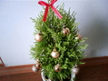もういーくつねると~クリスマス~・・・ちと早いか・・・・