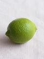 レモンの初収穫