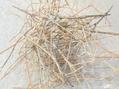 巣を撤去。