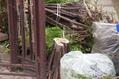 庭木の整理