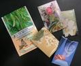 ゴーヤ等の種子 無料配布