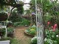 庭の様子№1