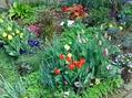 春の庭。総集編①